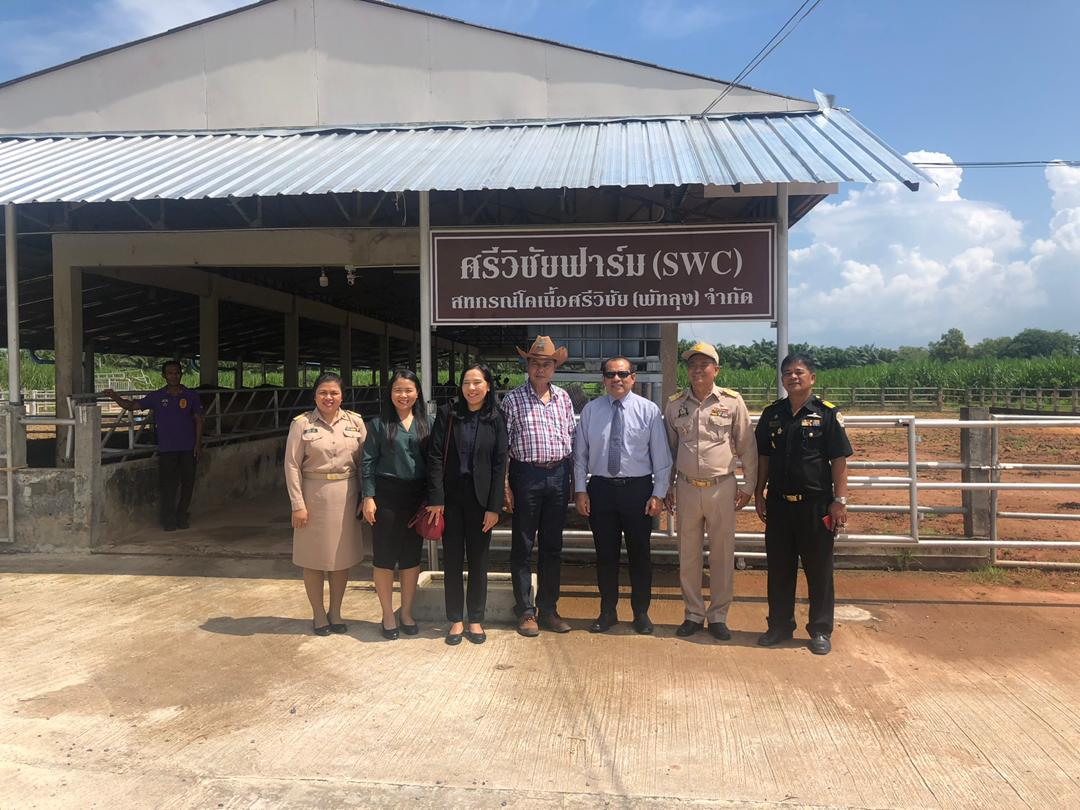 visit_phattalung4